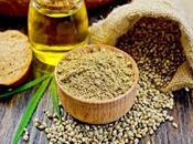 mangiato canapa? scopri virtù semi, olio farina