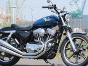 Harley Sportster Klamzy Works