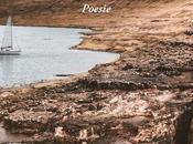 """breve scaffali delle librerie italiane silloge poetica Francesco Porretto, cuore padre"""", Edizioni Zisa, euro 12,00"""