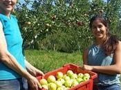 Umbria Eden delle mele