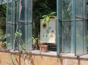 Biennale itinerante Palermo: riflettori puntati sulla sostenibilità
