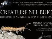 "Mostra Fotografica ""CREATURE BUIO"" NUVOLE-CASOLA 2018, fotografie Valentina Balestra Enrico Lana"