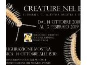 """Inaugurazione Mostra """"CREATURE BUIO"""" Museo Scienze Naturali Pinerolo"""