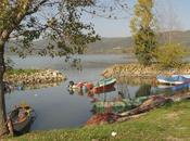 Vini bere sulle sponde lago Trasimeno