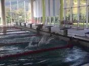 allenamenti nuoto PandaLab