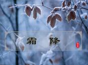 Gelo Frost