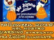 Halloween 2018 eventi Piceno