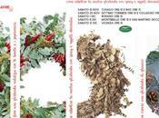 Workshop natalizi Viridea (ghirlande tutte tasche)