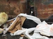 Crotone: azienda smaltiva illecitamente rifiuti speciali cassonetti dell'immondizia