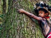 Brasile:Norvegia minimizza tensioni futuro governo Bolsonaro proposito rispetto dell'ambiente