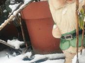 Come proteggere piante freddo invernale
