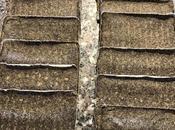 Crespelle grano saraceno