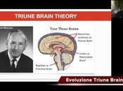Evoluzione Cervelli