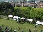 aprile 2019 alla Rocca Visconteo-Veneta Lonato Garda Giunge dodicesima edizione FIORInellaROCCA. Mostra mercato piante rare