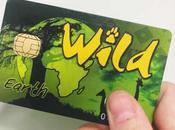 Wild Card: guida completa