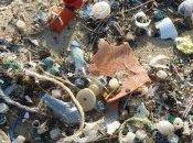 Inquinamento plastica: lancia petizione mondiale