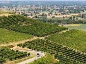 CRONACA CORANA (pv). L'economia territorio della Lombardia