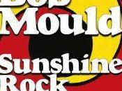 Mould Sunshine Rock