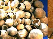 Archeologia della Sardegna. Benatzu: mezzo secolo capire? Articolo Gustavo Bernardino