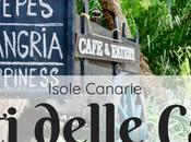 Cosa mangiare alle Canarie: sapori piatti tipici