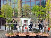 Mobili come isole verdi. Creatività giapponese Milano