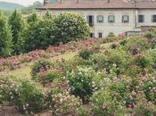 'Maggio fiore' Villa delle Porta Bozzolo, sarò voi?