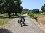 Parco Naturale della Maremma bicicletta: itinerario boschi, ulivi mare