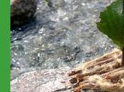 Attività montagna rispettando natura