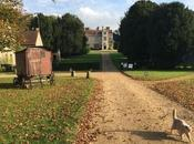 Chawton House, passi cottage, alla scoperta degli angoli preferiti Jane