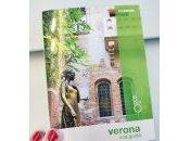 Basilica Zeno, Verona #viaggi #andreamantegna [#turismo]