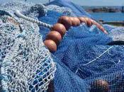 pesca delle reti