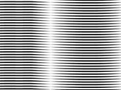 Ricardo carioba-non linear spatial normalizations