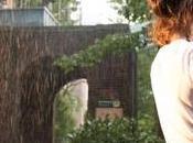 giorno pioggia York. Woody Allen. 2019