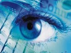 Cyberstalking cyberbullismo: sentenza giurisprudenza