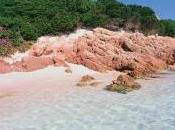 spiaggia rosa sull'isola Budelli