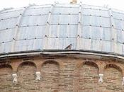falco pellegrino prende casa Venezia