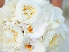 colore trend matrimoni: bianco