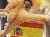 Spagna, pronta l'offerta polpo paul