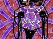 caveja simbolo della romagna