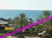 Estate 2011 :tunisia