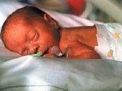 Aborto, animalismo, diritto alla vita