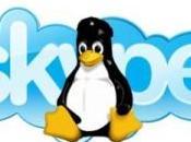 Linux: webcam funzionante Skype? Ecco script potrebbe risolvere