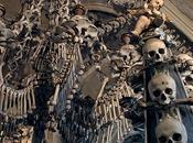 Illuminati:Bones