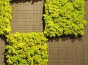 MOSStile: primo giardino verticale manutenzione zero
