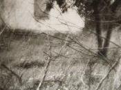 Andrea Papi Passaggi. Autoritratti dell'invisto