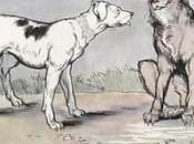 Racconti: lupo cane Fedro