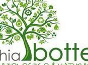 VecchiaBottega: Novità Douces Angevines Centifolia