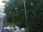 Aspettare l'autobus rifiuti