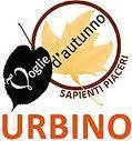 """domani, """"Voglie d'Autunno"""" Urbino."""