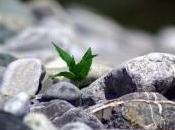 Prenditi responsabilità corpo vita piena salute!(prima parte)